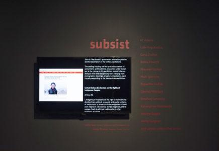 subsist installation photo