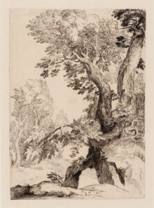Paul Bril (Flemish (born in Belgium), 1554–1626.) Trees on a Rocky Bank, c. 1590. ink on paper, 35.2 x 27 cm. Collection of the Winnipeg Art Gallery, G-63-300. Photo: Ernest Mayer