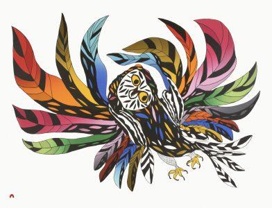 OOLOOSIE SAILA. Festive Owl.Lithograph.Paper: BFK Rives White.Printer: Niveaksie Quvianaqtuliaq.56.8 x 73.3 cm.$ 1000