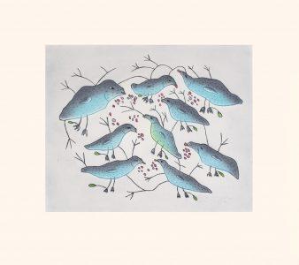 MALAIJA POOTOOGOOK. Birds Eating Berries.Etching & Aquatint.Paper: Arches White.Printer: Studio PM.48.5 x 54.5 cm.$ 500